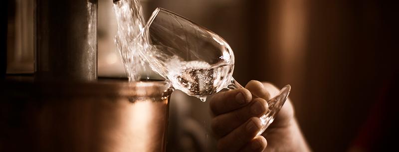 Gin Spiritueux Dugas Club Expert Les origines
