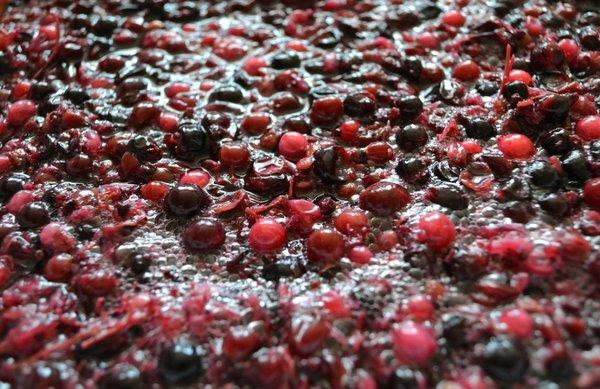 liqueurs_fruits_elaboration